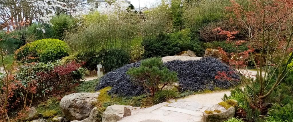 Stream Garden japanese GArdens