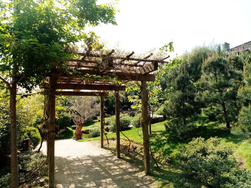 fujidana japanese gardens tramore